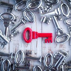 Kuvituskuva Shutterstock avainosaajat
