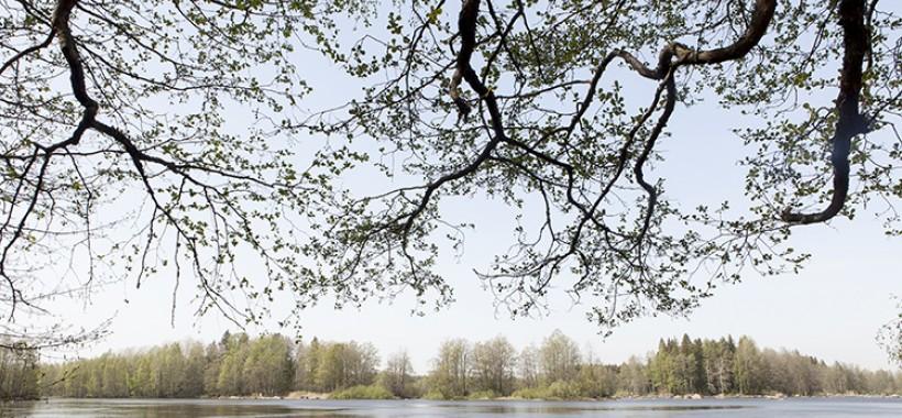 Kymijoki Kymijoen kuvapankki.jpg