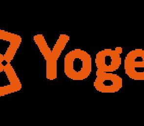 yogelina logo.png