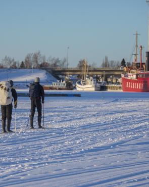 Hiihtäjiä Haminassa meren jäällä