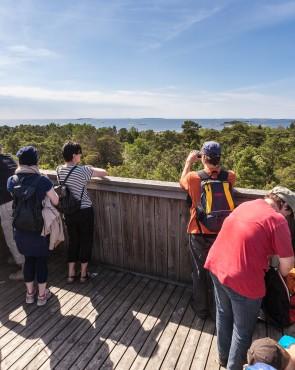 kansallispuisto ulko-tammio